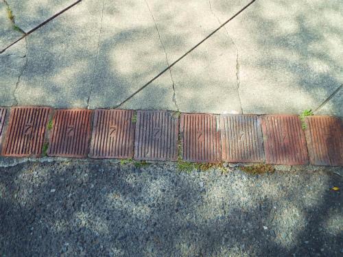 DSCF4963.jpg