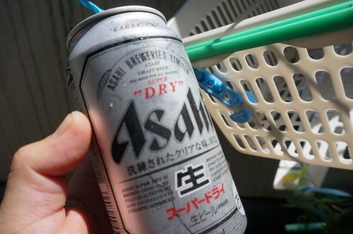 DSC08995.jpg