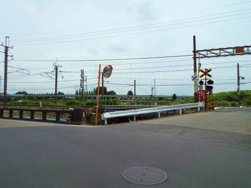 DSCF2544.jpg