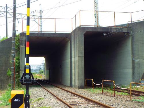 DSCF2553.jpg